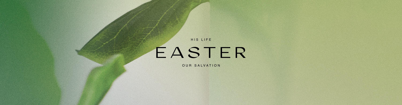 NLC Easter 2018   Palm Beach - New Life Church   Brushfire
